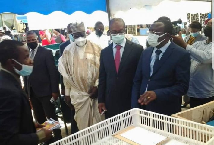Promotion of SMEs: Cameroon Government Rewards First Set of Innovative, Profitable Projects
